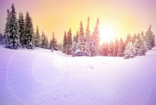 Зимы в россии стали заметно теплее